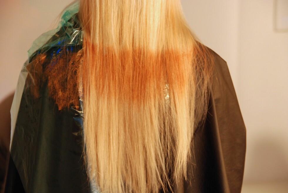 FLASHLIGHT: En effektstripe på tvers av håret er en ny vri på ombrélooken og blir superlekkert med en mer naturlig farge, som Bronze Beach, som er brukt her.  Foto: Aina Kristiansen