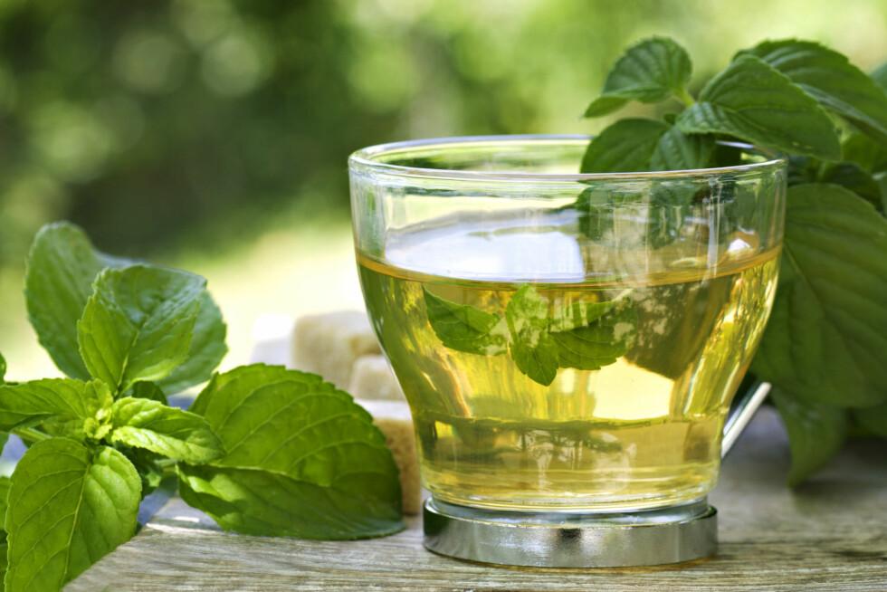 DROPP URTETE DAGEN DERPÅ: Den varmer riktignok godt, men ifølge forskerne bremser den ned prosessen som bryter ned alkoholen i kroppen - som er årsaken til at du er klein. Foto: Thinkstock.com