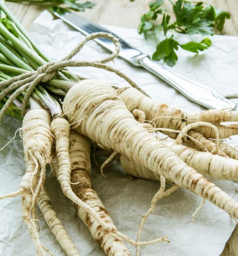 PERSILLEROT: Denne grønnsaken bør du bruke mer. Foto: tanjichica - Fotolia
