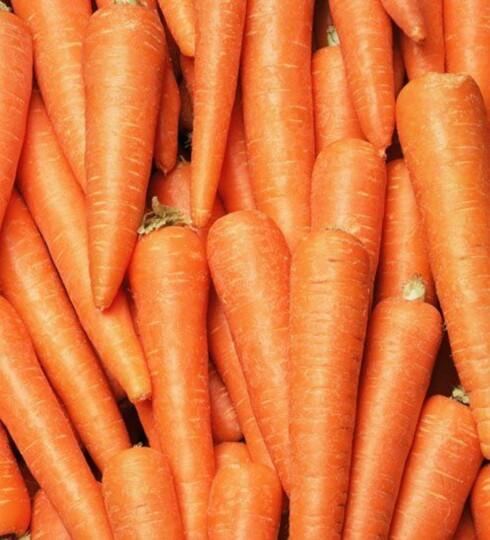 GULRØTTER: Så smakfullt og så sunt. Foto: Thinkstock.com
