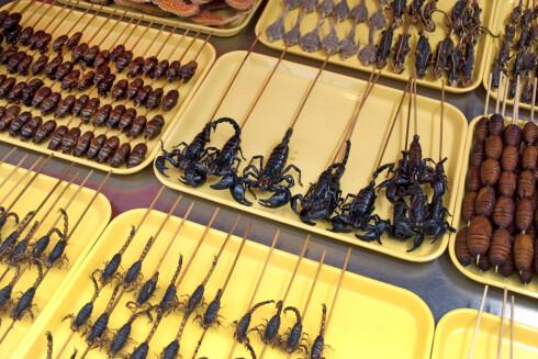 SOM MAT: Det finnes stedet i verden der insekter regnes som delikatesser.  Foto: Delphimages - Fotolia