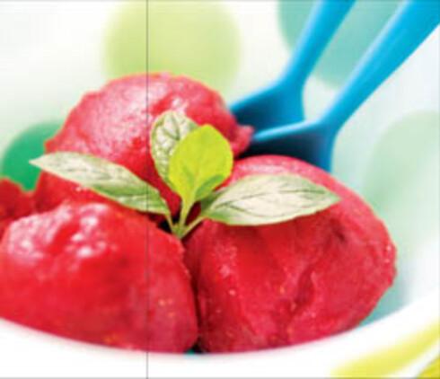 Vannmelon- og bringebærsorbet