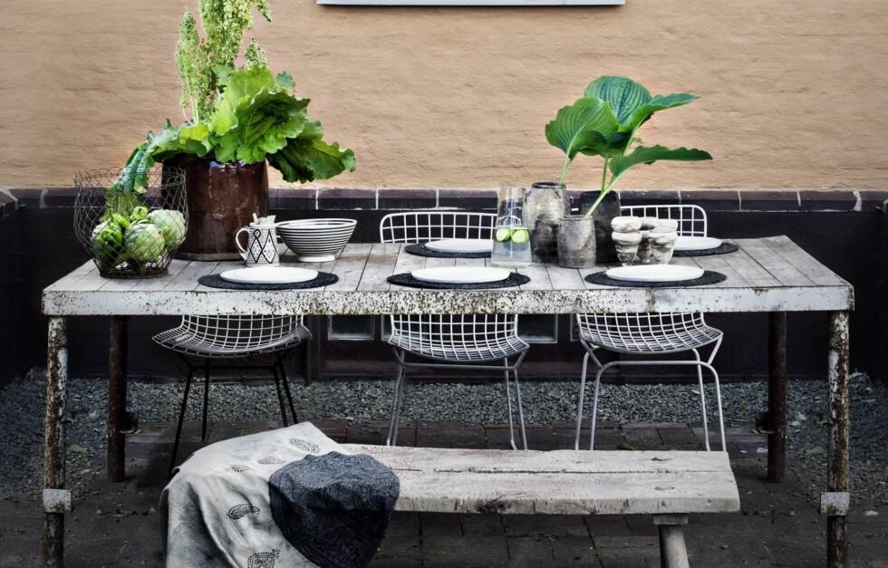 DEKORASJON: For å gjøre litt ekstra stas på festen er det ikke så mye som skal til for å dekke sommerens fineste bord. Foto: Hannah Lemholt
