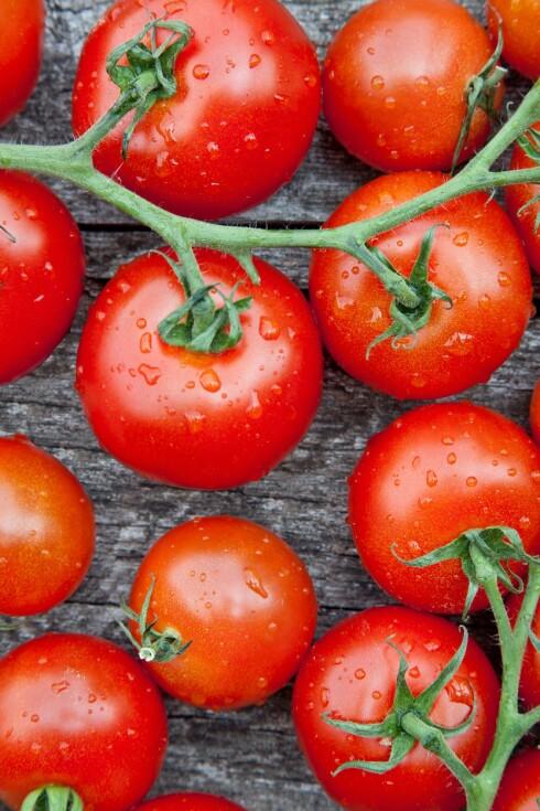 SUNNERE: Små tomater, som for eksempel cherrytomater, skal være enda sunnere enn de større.  Foto: Getty Images/iStockphoto