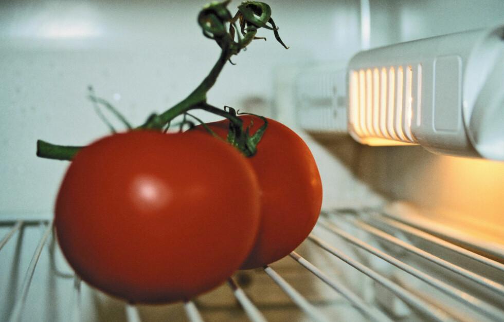LEGG DEM PÅ KJØKKENBENKEN: I likhet med bananer og agurk, skal tomater oppbevares i romtemperatur. Altså, kjøleskapet = fy fy! Foto: Getty Images/Image Source