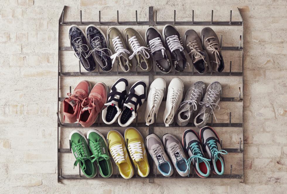 KJØPSINFO: Øverst fra venstre:Med mønster (kr 1100, Diesel), kakhigrønne (kr 1150, Ca Shott), svarte (kr 1900, Notabene), brune (kr 900, Ib Balschmidt), røde (kr 1690, Ash), blå og hvite (kr 1500, Tommy Hilfiger), hvite (kr 250, H&M), grå (kr 1400, Sofie Schnoor), grønne (kr 700, Superga), gule (kr 550, Hummel), grå og blå (kr 800, Puma) og flerfargede (200, H&M). Foto: Jakob Kirk