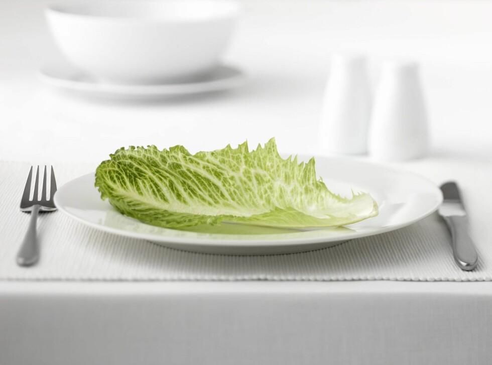 Forsøker du å gå ned i vekt? Føler du noen ganger at dette er middagen du står ovenfor? Gå ned på den riktige måten. Foto: All Over Press