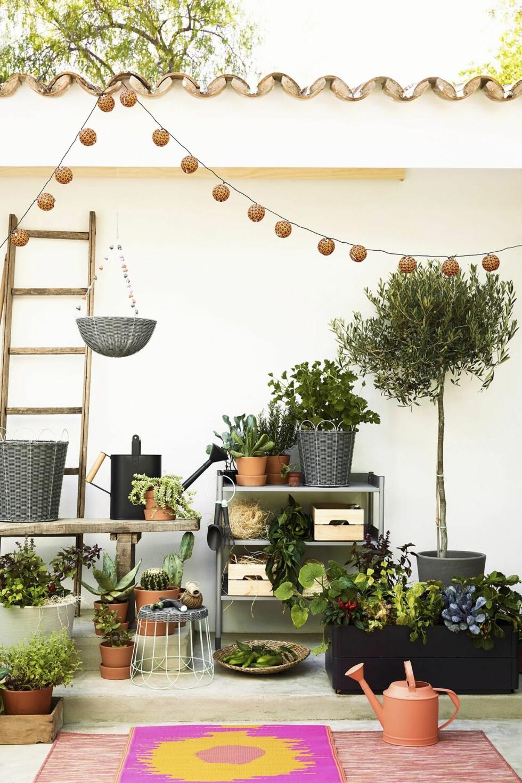 TRILLEBORD: More is more! Kan aldri bli for mye planter. Bilde fra Ib Laursen. Spe på med en vannbeholder med kran ved trillebordet og en oppvaskbalje, så har du «vask» også, uten at tusenlappene flyr! Foto: Produsenten