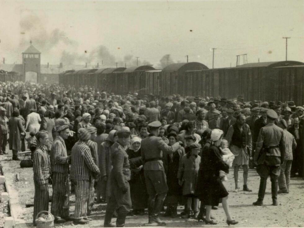 HISTORISK FOTO: Dette bildet viser Auschwitz-Birkenau i mai 1944. Ungarske jøder har akkurat ankommet konsentrasjonsleiren, og venter på å bli fortalt hvor de skal gå - enten til arbeidsbrakkene eller rett til gasskammeret. Bildet ble donert av Lili Jacob til minnesenteret Yad Vashem i Jerusalem i 1980.  Foto: Foto: NTB Scanpix