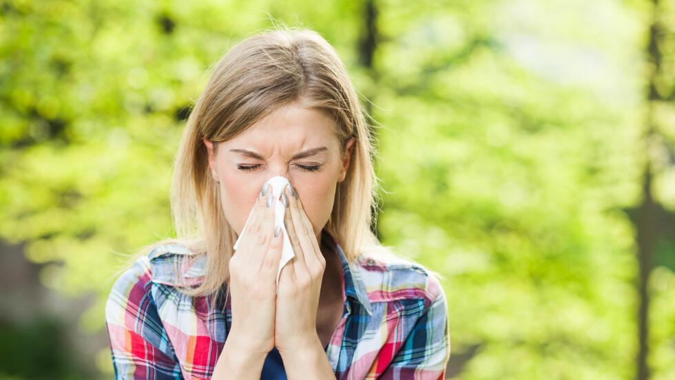 POLLENALLERGI:I år startet pollensesongen rekordtidlig. Mange tar kortisonsprøyte for å få raskt bukt med symptomene, men dette er ikke anbefalt av blant andre Norges astma- og allergiforbund Foto: NTB Scanpix