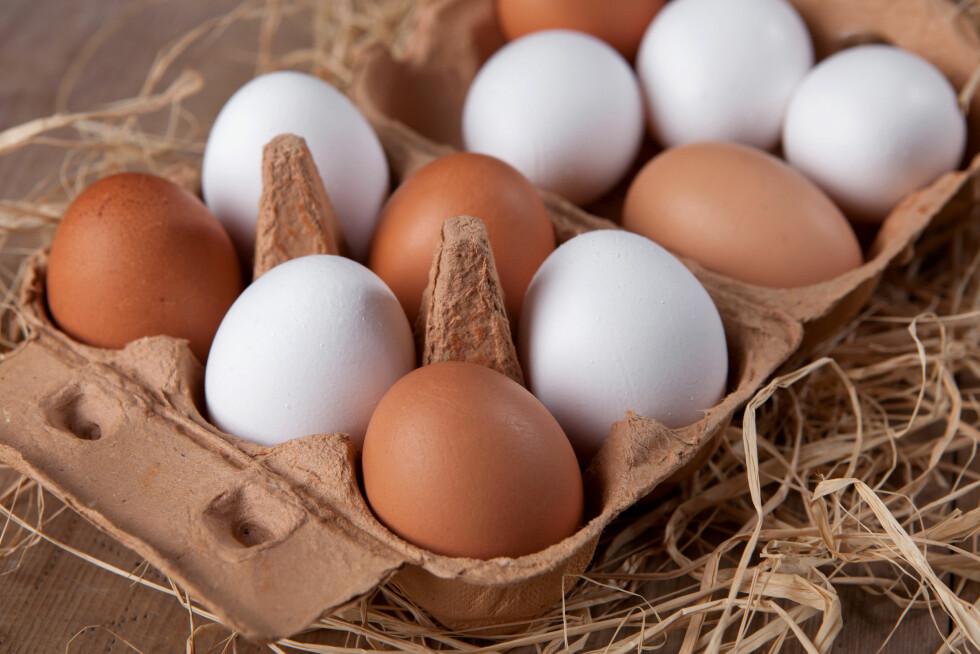 EGG: Hvor mange egg kan man egentlig spise om dagen? Ekspertene har gitt oss svaret!  Foto: A_Bruno - Fotolia