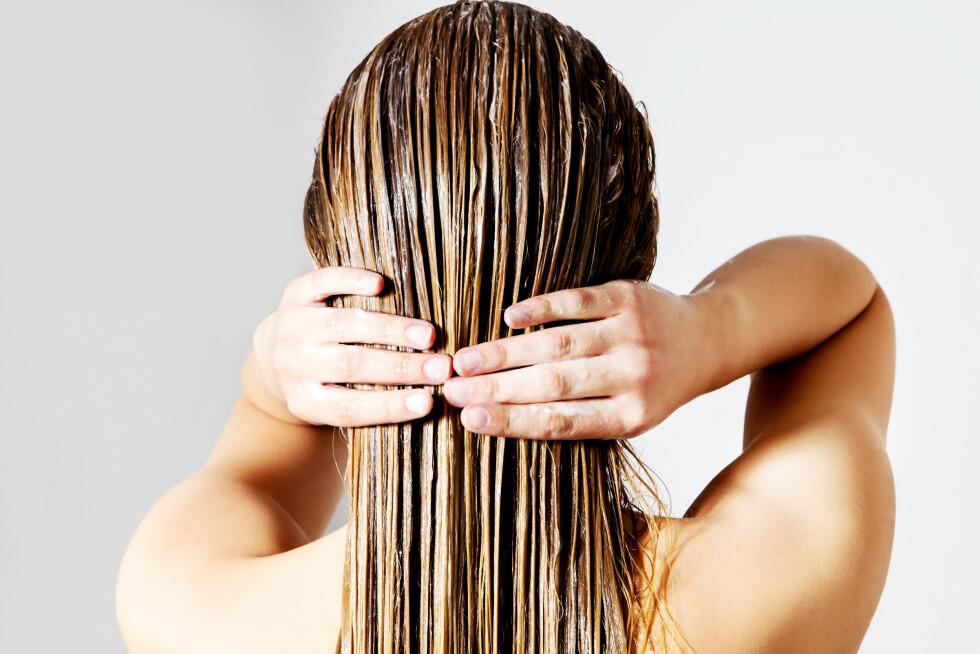 HÅRKUR: Hvor ofte skal man egentlig ta hårkur? Vi har bedt ekspertene gi oss sine beste tips!  Foto: Shutterstock / PhotoMediaGroup