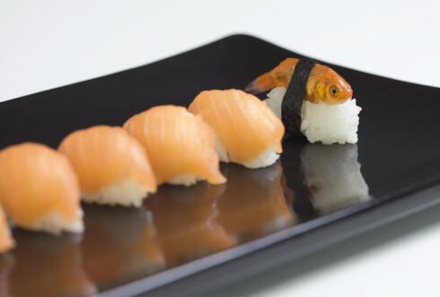Sushi kan få opp humøret ditt. Foto: colourbox.com