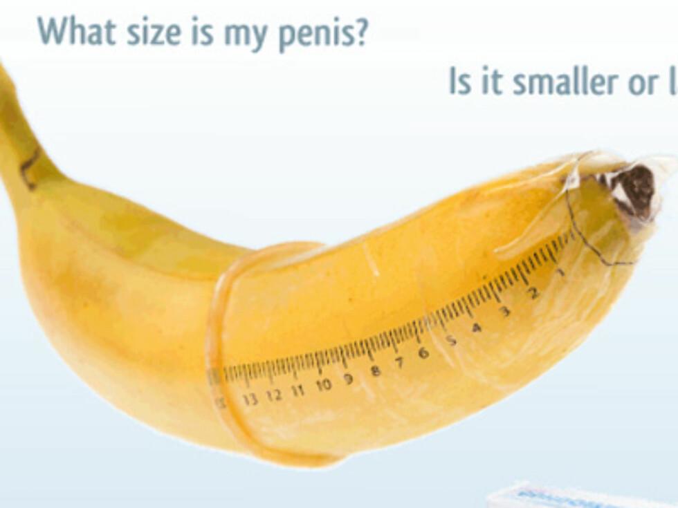 Lurer du på hvor stor han er? Nå kan du finne det ut på en enkel og grei måte. Foto: http://www.curiosite.com/condo