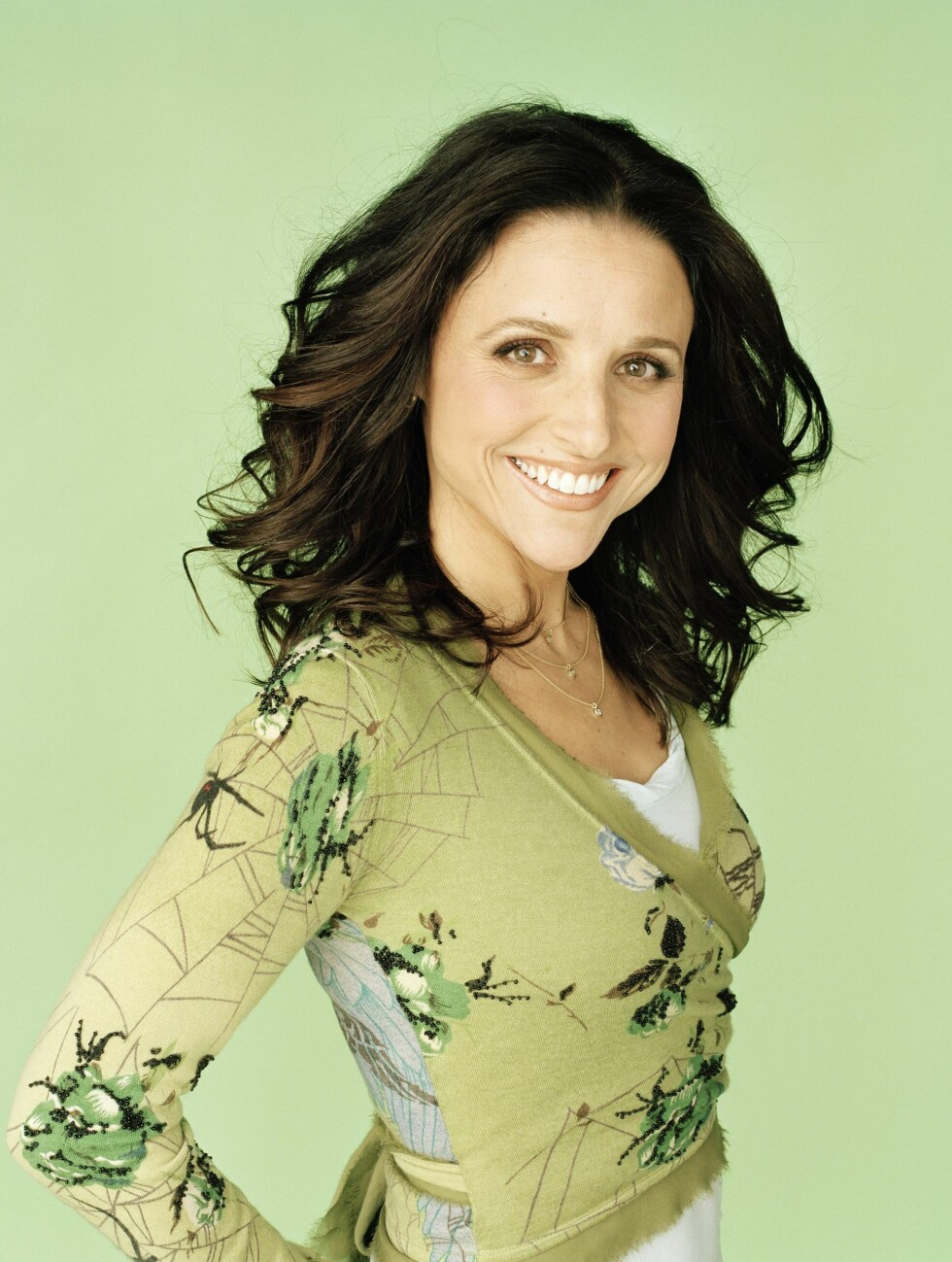 Julia Louis-Dreyfus har lang fartstid i en rekke miljøorganisasjoner, blant annet Heal the Bay, The Natural Resources Defense Council og the Trust for Public Land. Den tidligere Seinfeld-stjernen bor også i et solcelledrevet hus.  Foto: All Over Press