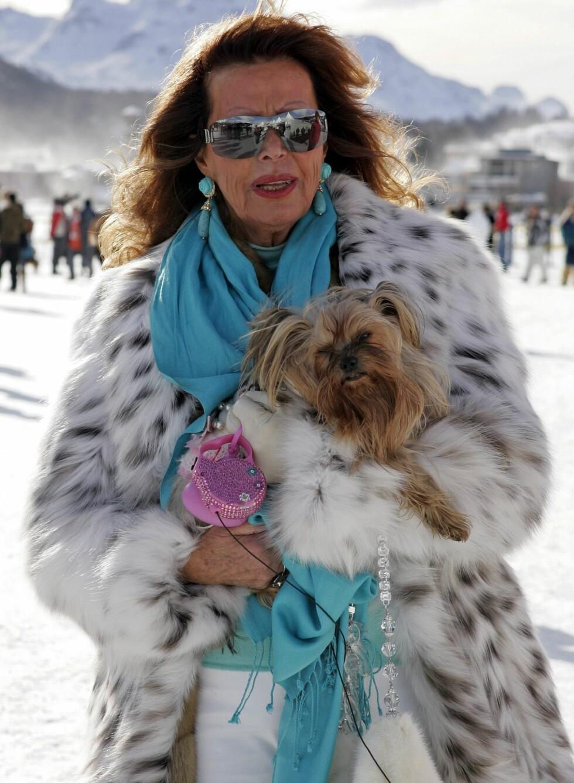 Fluffy pels, lodden Fido. Foto: All Over Press