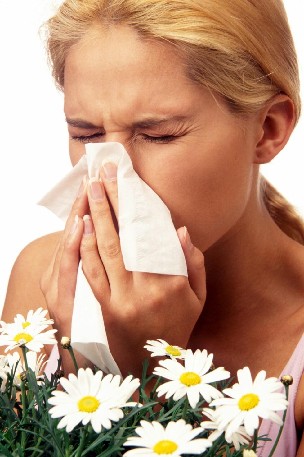 Ny pollenrekord