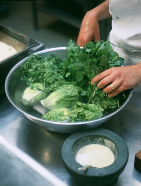 Tapetsert med salat
