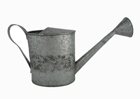 Vannkanne i metall (kr 90, Indiska).