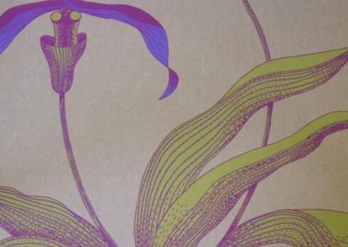 Fra planteriket.Elegante og yndige orkideer i duse farger (kr 800 pr. rull, Cole & Son).