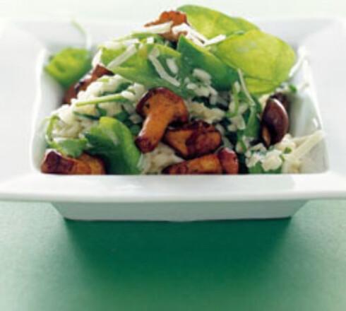 Risotto med spinat og sopp