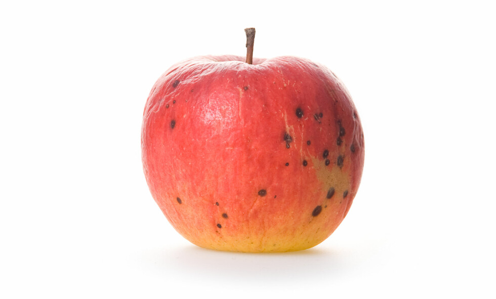 <strong>SKJÆR VEKK:</strong> Dersom eplet har blitt flekkete, så skjær vekk alle flekkene og gjerne litt til.  Foto: Colourbox.com