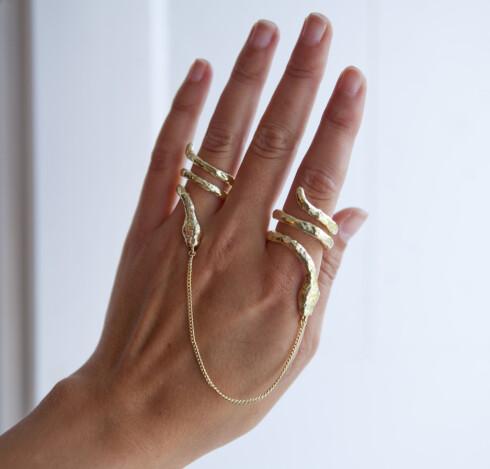 KJETTINGLENKE: Slangeformede ringer bindes sammen med en kjettinglenke. Foto: Per Ervland