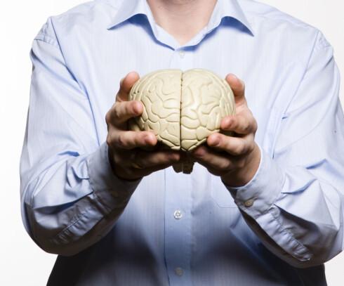 KRYMPER HJERNEN: Forskning har vist at det å lide av fedme eller være overvektig har en negativ innvirkning på hjernen og faktisk kan få den til å krympe.  Foto: Colourbox