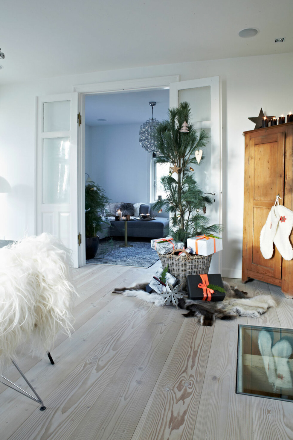 JULETRE I KURV: Ane og familien elsker de litt rare og skjeve trærne som ingen andre vil ha. De små fuglene på treet er faste innslag i familiens jul. Se så fint det blir å sette juletreet i en kurv! Foto: Lene Samsø