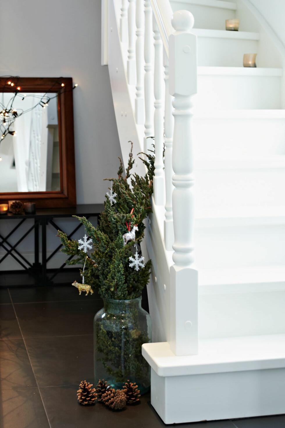GOD ADVENTSTID: Kongler og grønt finnes overalt ihuset i advents- og juletiden. Foto: Lene Samsø