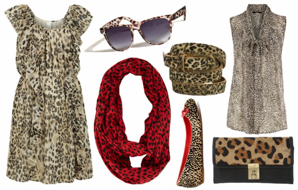 KNURRENDE KJØPETIPS: Leopardmønsteret er mer populært enn noensinne, noe klesbutikkene selvfølgelig har fått med seg. Se priser og flere plagg i bildeviseren under. Foto: Produsentene