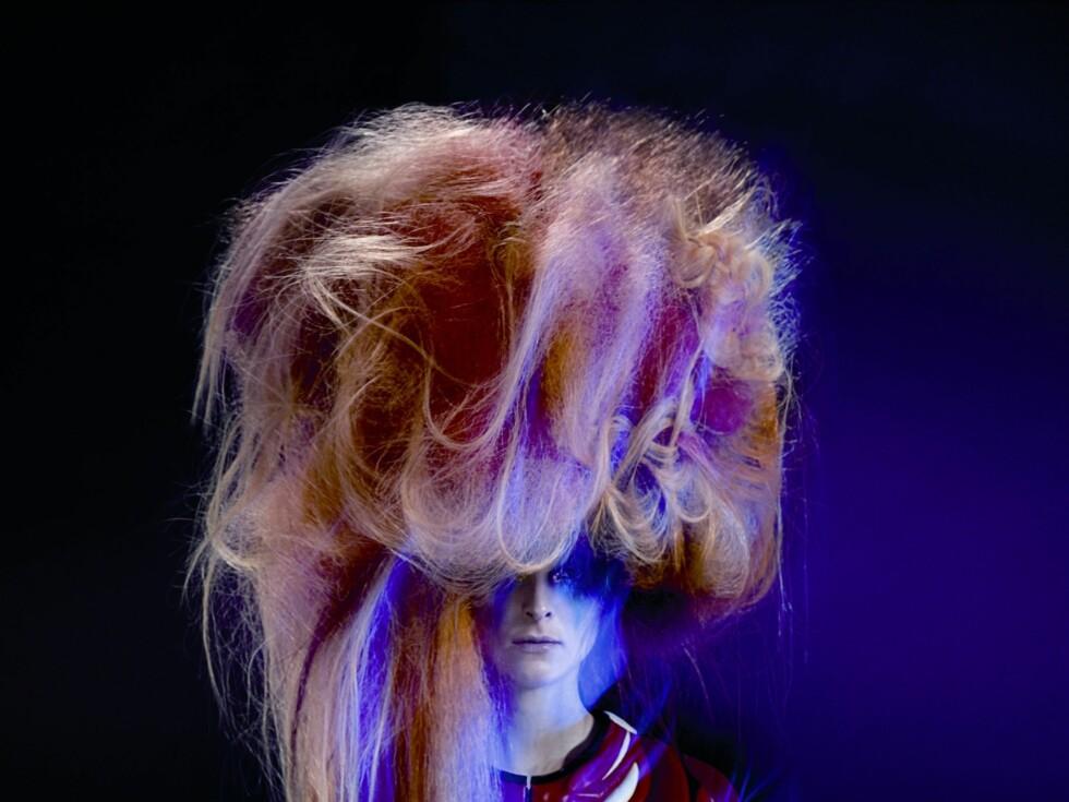 Wella Trend Vision / Haute Couture 2010