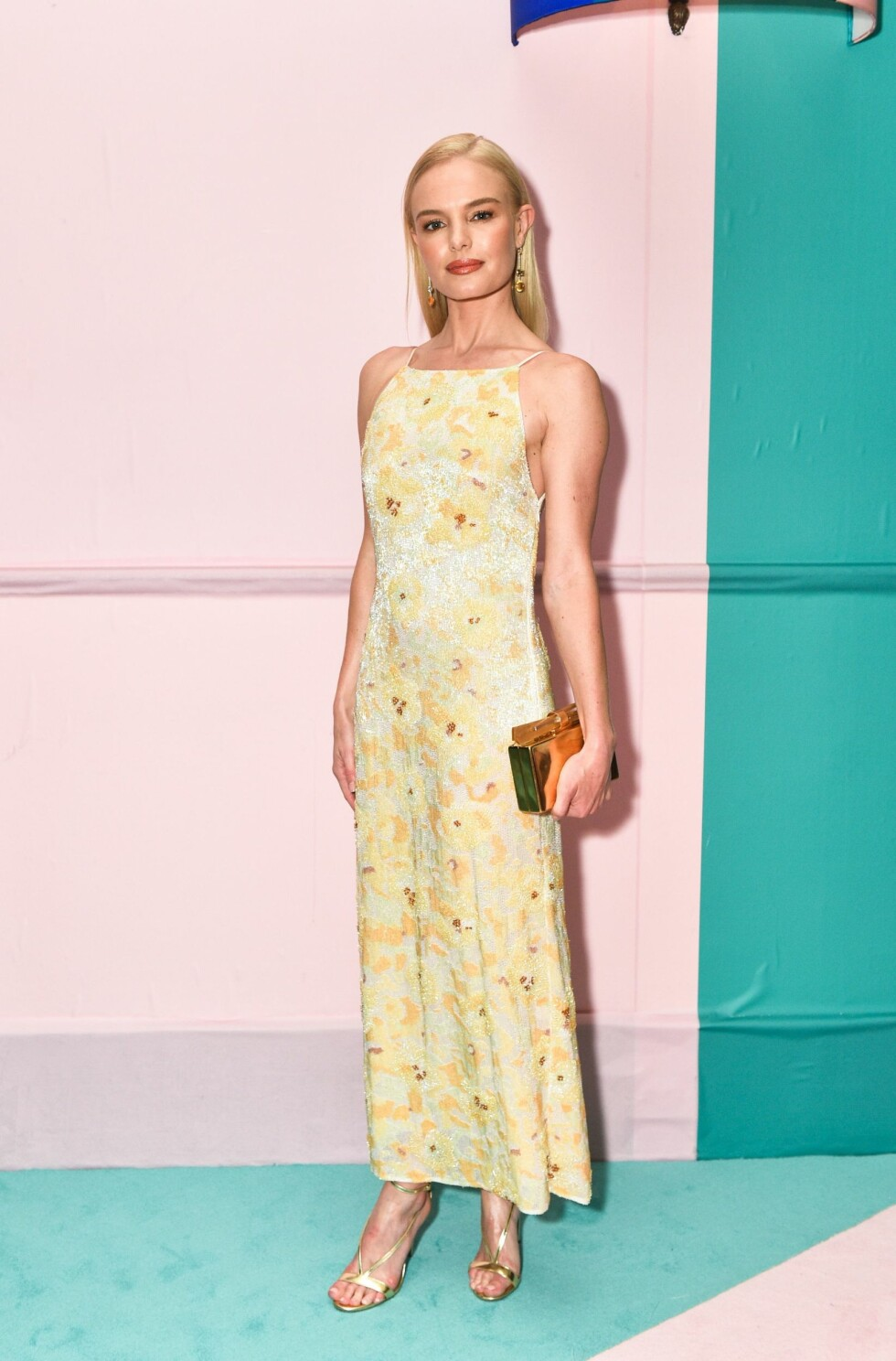 CFDA FASHION AWARDS: Kate Bosworth Foto: Shutterstock
