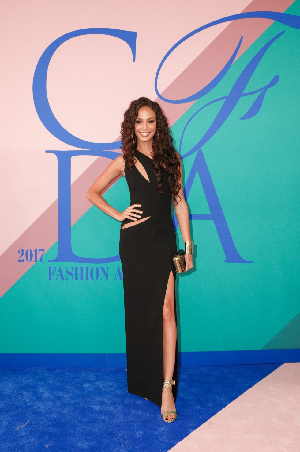 CFDA FASHION AWARDS: Joan Smalls Foto: Shutterstock