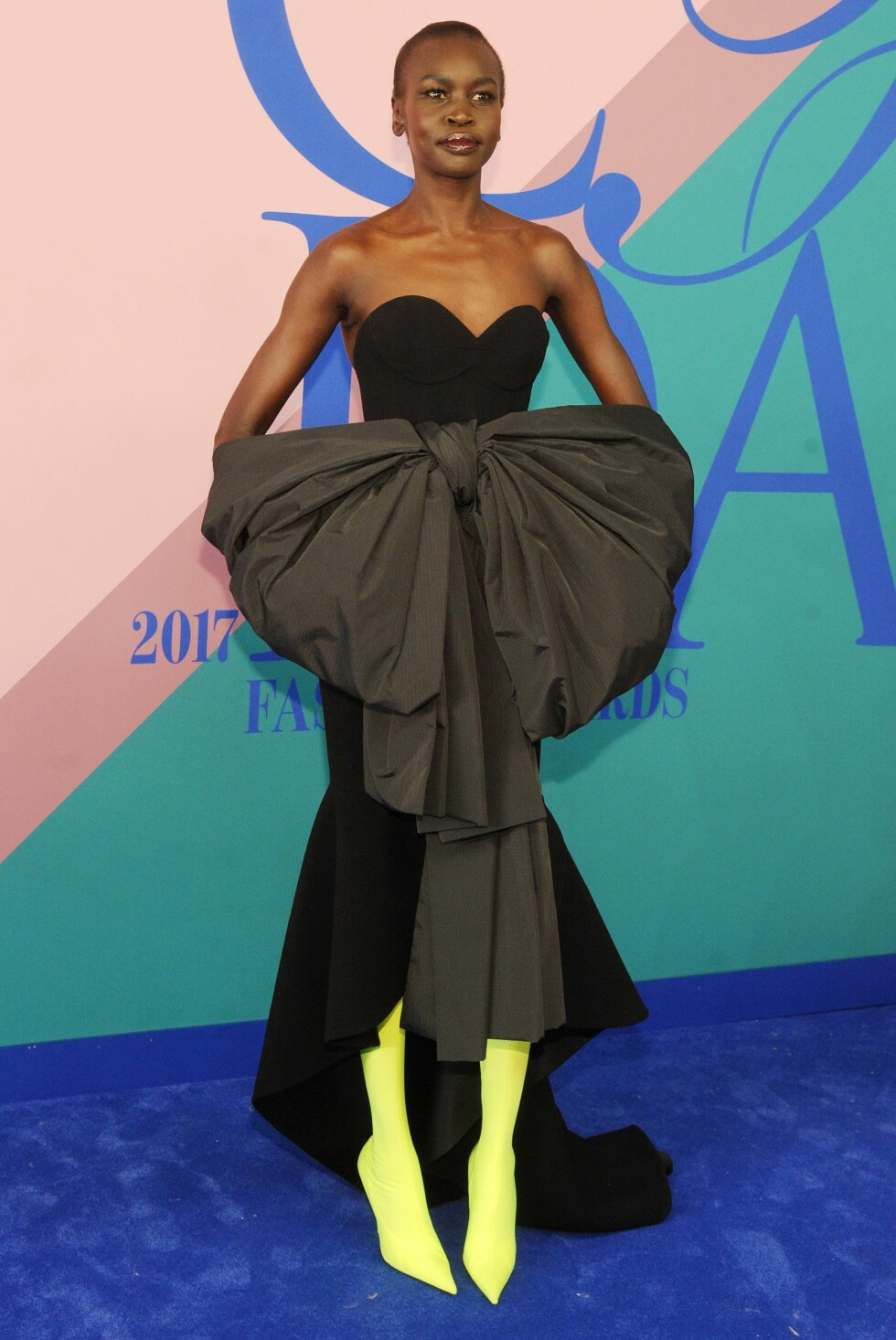 CFDA FASHION AWARDS: Alek Wek Foto: Shutterstock
