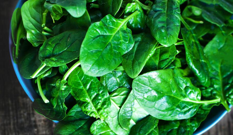TIDLIG OVERGANGSALDER: En ny studie viser at et høyt inntak av D-vitamin og kalsium kan forhindre tidlig overgangsalder. Foto: NTB Scanpix