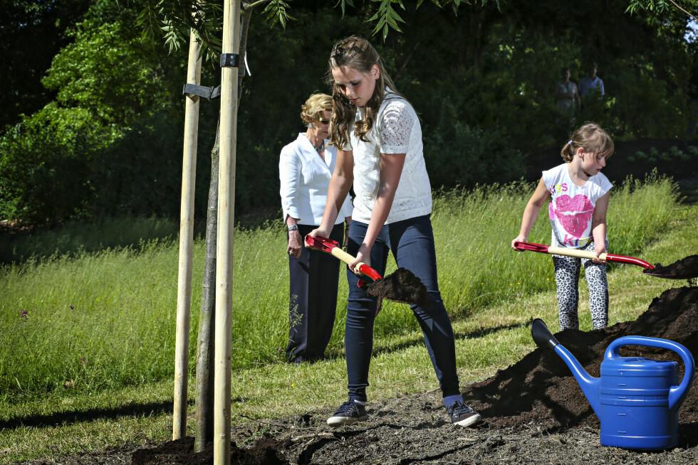 TOK I ET TAK: I år er Slottsparken blitt omdøpt til Jubileumsparken i forbindelse med 25-årsjubileet, og med på laget hadde dronning Sonja i sommer fått barnebarna prinsesse Ingrid Alexandra og Leah Isadora til å hjelpe med å plante trær og blomster. Foto: NTB Scanpix