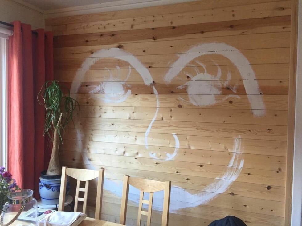 SMIL: På den ene stueveggen har Stine malt et smilende fjes. – Jeg hadde planer om å male veggen. Så langt kom jeg, ler hun. – Men det minner meg jo på å holde humøret oppe!    Foto: Privat