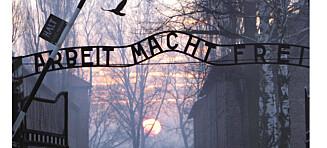 Et slags reisebrev: Fra Auschwitz til Stavernfestivalen