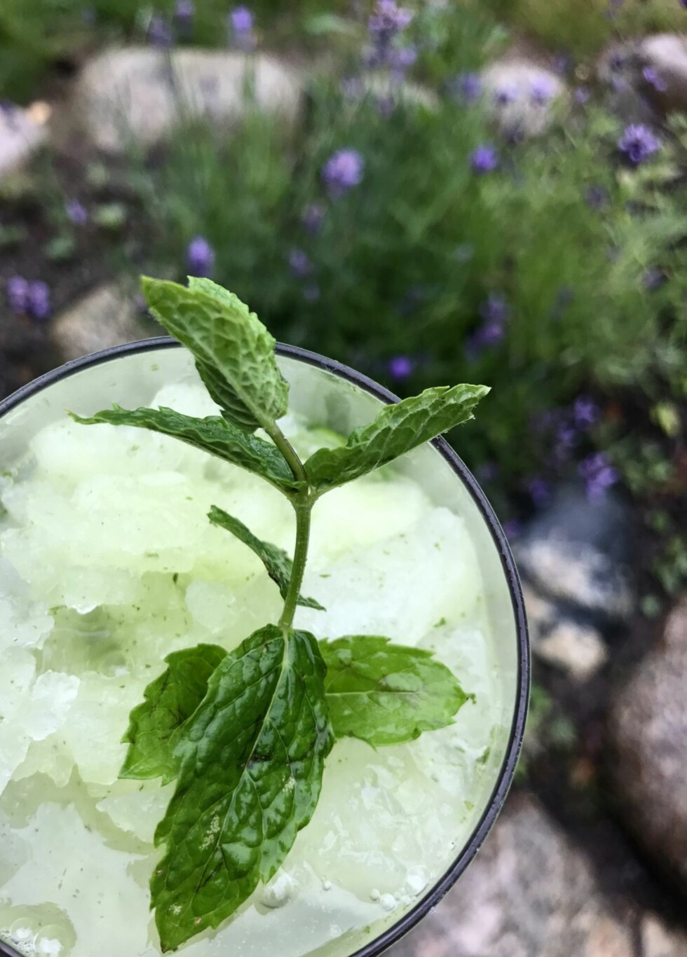 BLOGG: Mmm... Deilig, alkoholfri mojitoslush!