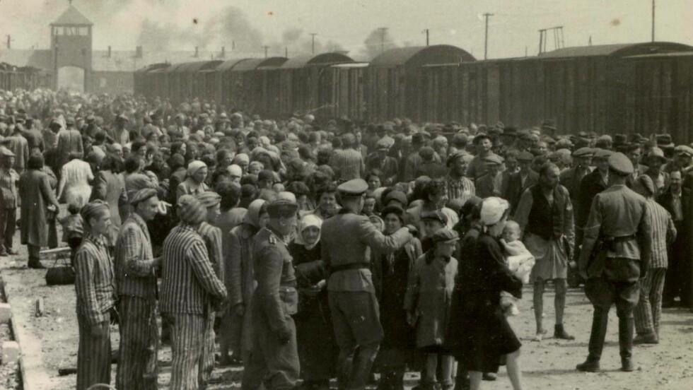 BEVIS: Dette bildet viser Auschwitz-Birkenau i mai 1944. Ungarske jøder har akkurat ankommet konsentrasjonsleiren, og venter på å bli fortalt hvor de skal gå - enten til arbeidsbrakkene eller rett til gasskammeret. Bildet ble donert av Lili Jacob til minnesenteret Yad Vashem i Jerusalem i 1980, og er en del av «The Auschwitz Album». Foto: NTB Scanpix