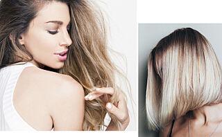 Det evige spørsmålet: Kort eller langt hår?