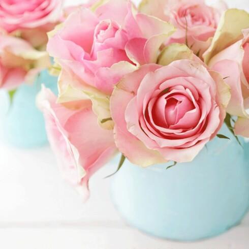 FARLIG PENT: Blomster kan utløse frykt. Foto: NTB Scanpix