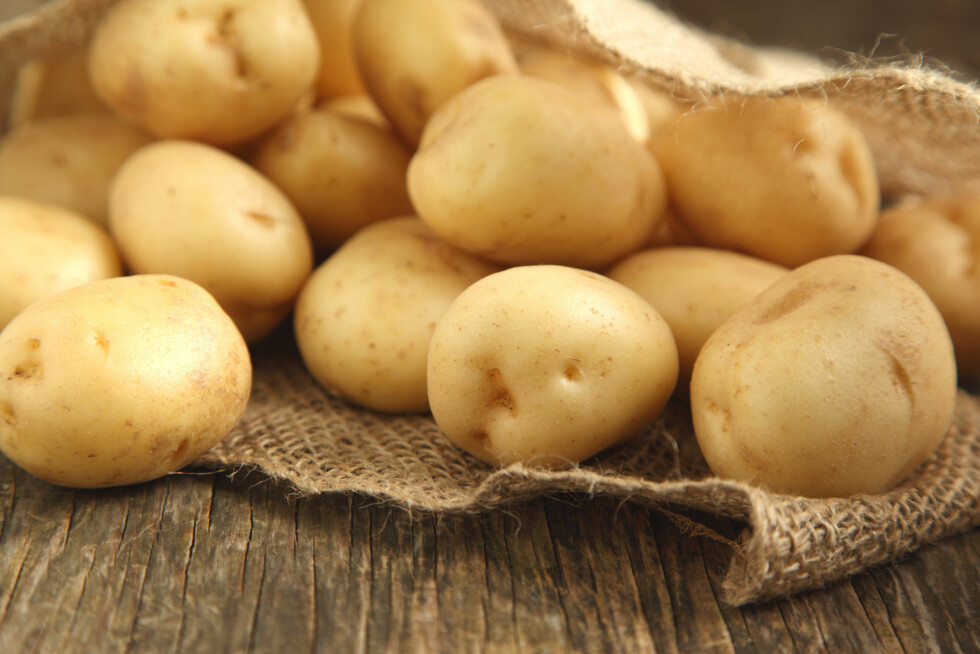 POTETER: Andelen poteter variere mellom å være 40 og 60 prosent i de forskjellige potetsalatene på markedet.  Foto: anjelagr - Fotolia
