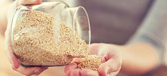 Bulgur, couscous, byggris eller quinoa?