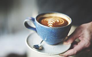 Så mye kaffe er det greit å drikke