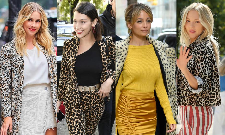 Claire Holt, Bella Hadid, Nicole Richie og blogger Shea Marie er fire av stjernene som har kastet seg på leopardtrenden. Foto: NTB Scanpix