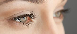 De vanligste øyesykdommene