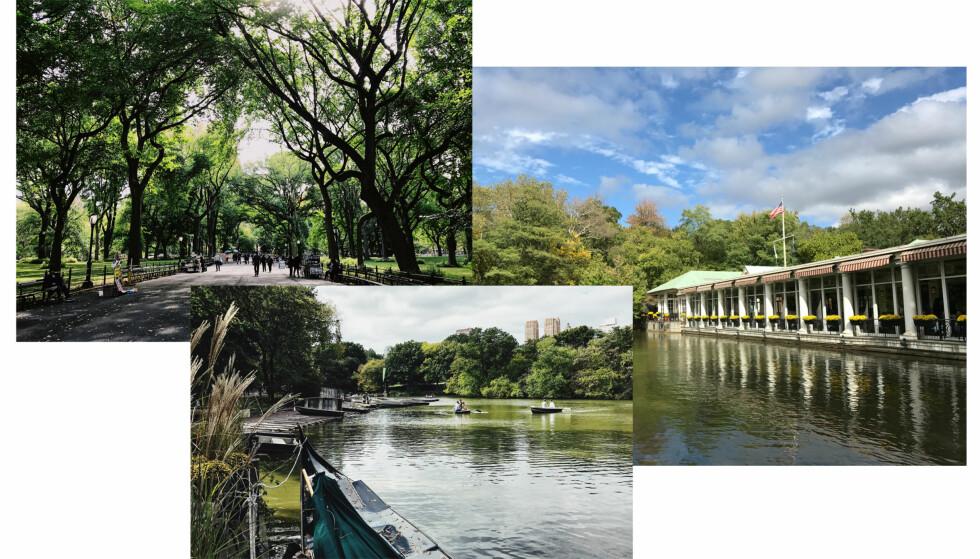 CENTRAL PARK: Bruk god tid og utforsk alle kriker og kroker ved den storslåtte parken! Foto: Malin Gaden