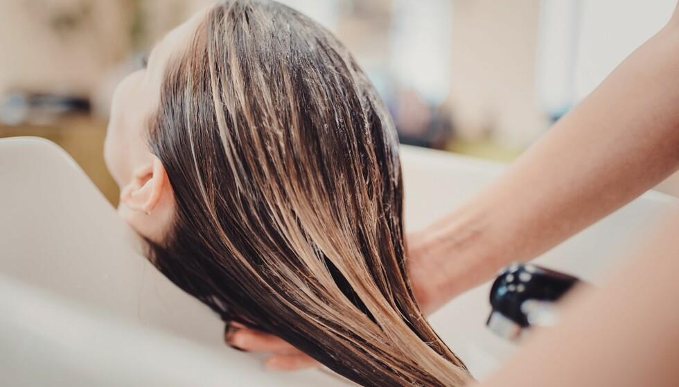 <strong>BEHANDLET:</strong> Kjemisk behandlet hår må klippes oftere. FOTO: NTB Scanpix